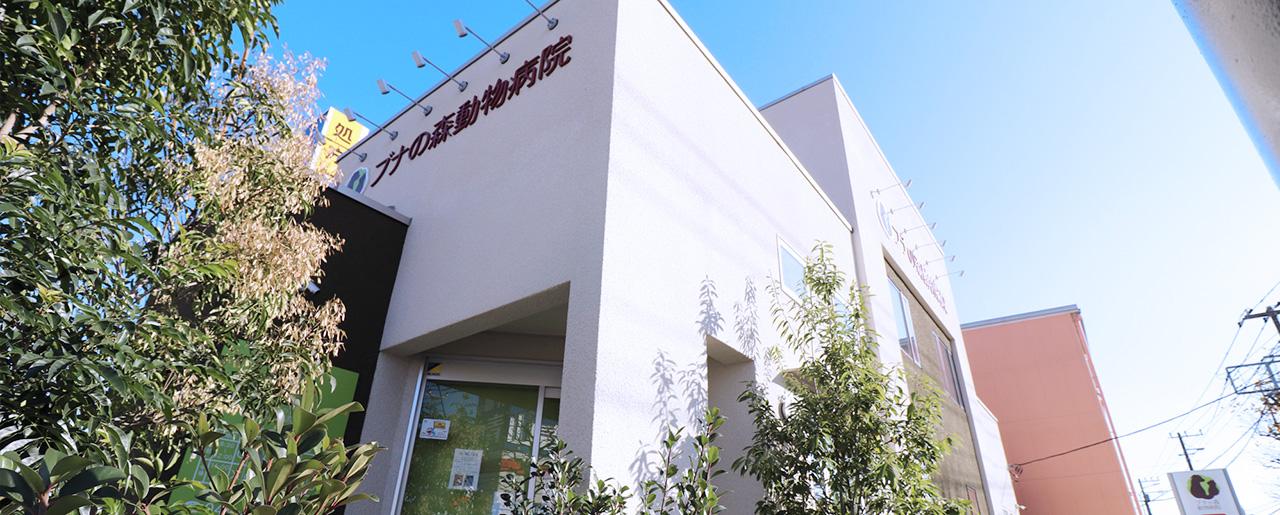 ブナの森動物病院